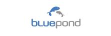 bluepond
