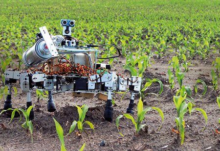 Changing Role of Robotics in European Agriculture