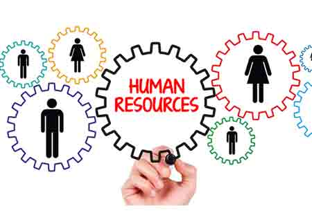 How Insurance Firms in Europe are Optimising Human Resources