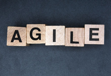 How to Develop Agile Enterprise Framework